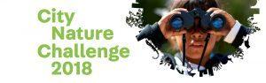 city-nature-challenge-2018