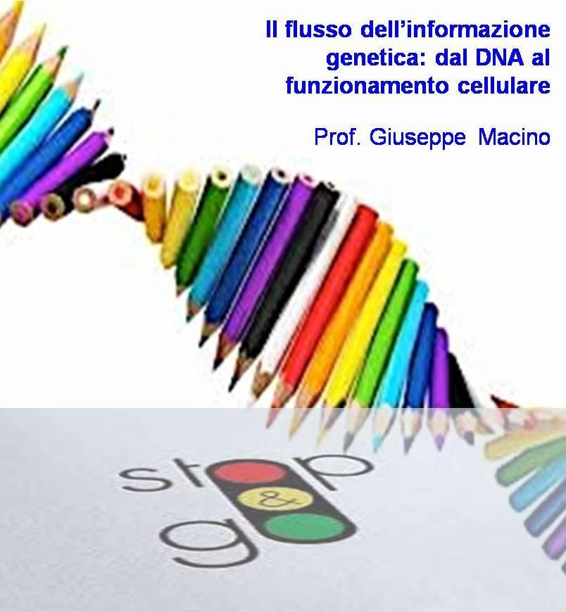 flusso info_genetica